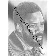 Strand-Coleman Domingo